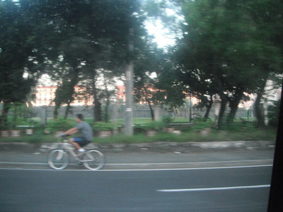 Behind the trees are the historical site-Intramuros..http://www.philippinecountry.com/philippine_tourist_spot/intramuros.html
