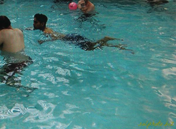 http://sports.goodnewseverybody.com/swimming.html