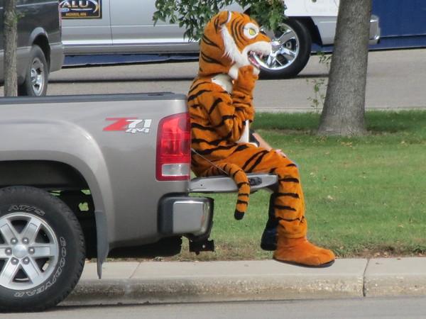 Morris Area Tigers Homecoming Parade 2015